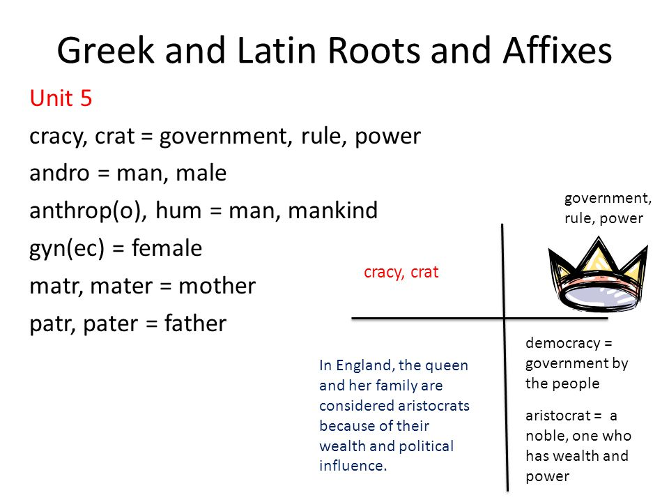 Greek and Latin Roots and Affixes - ppt download