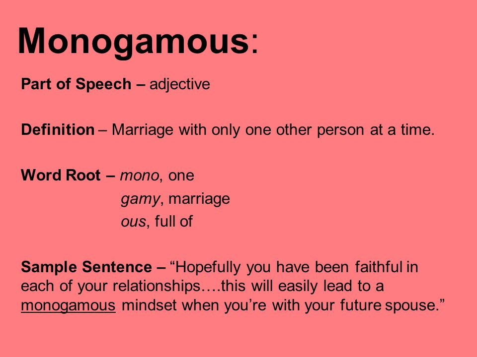 What does monogamous relationship mean