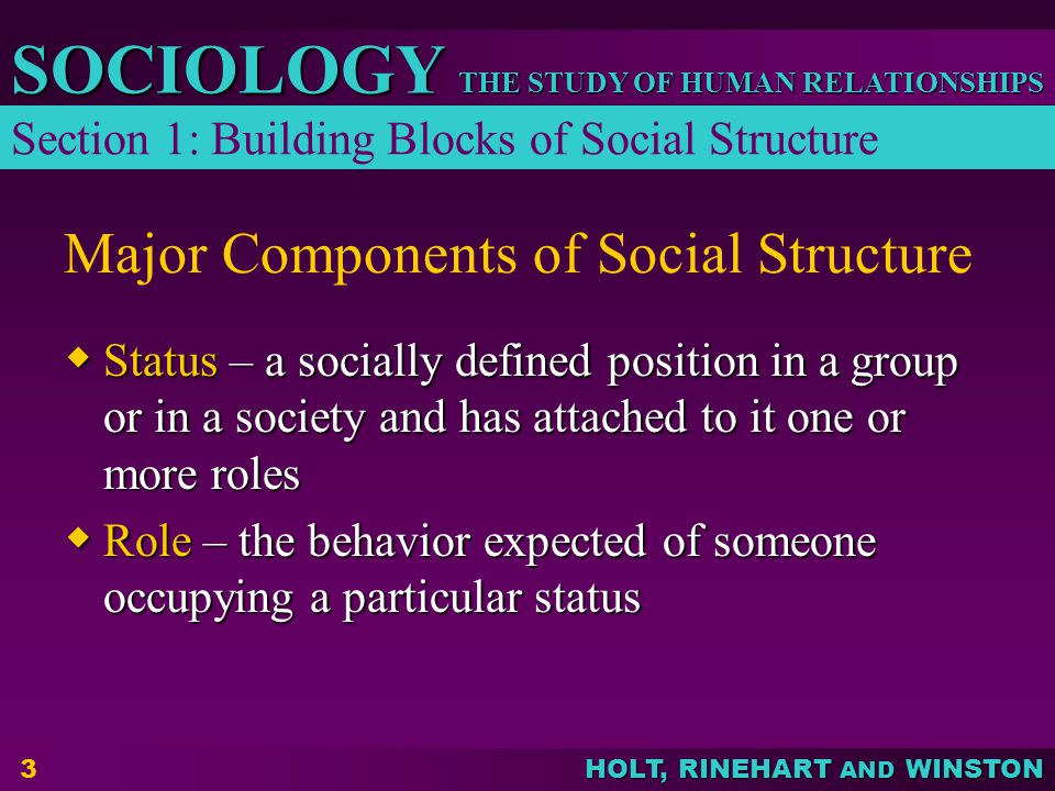 Major Components of Social Structure