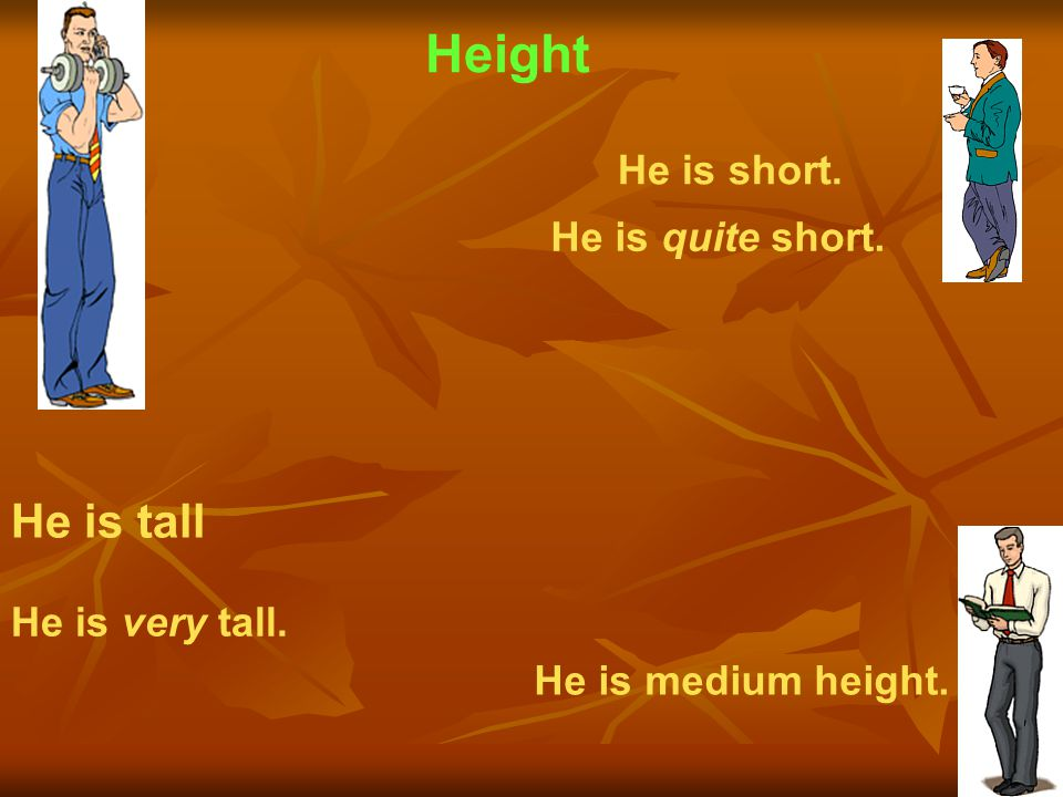 Height He is tall He is short. He is quite short. He is very tall.