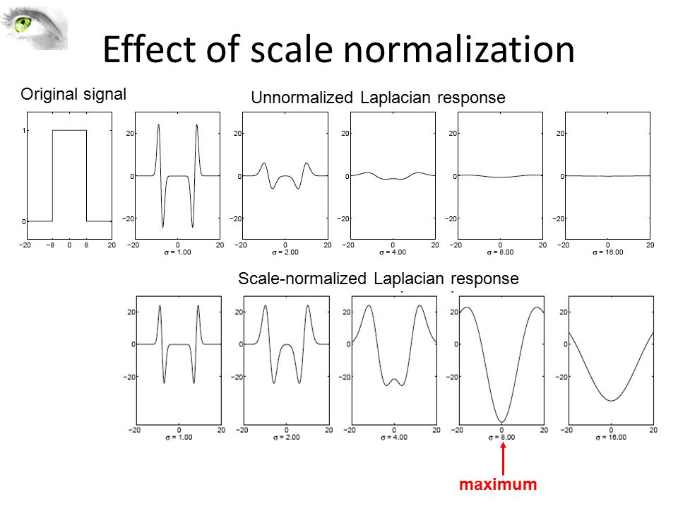 Effect of scale normalization