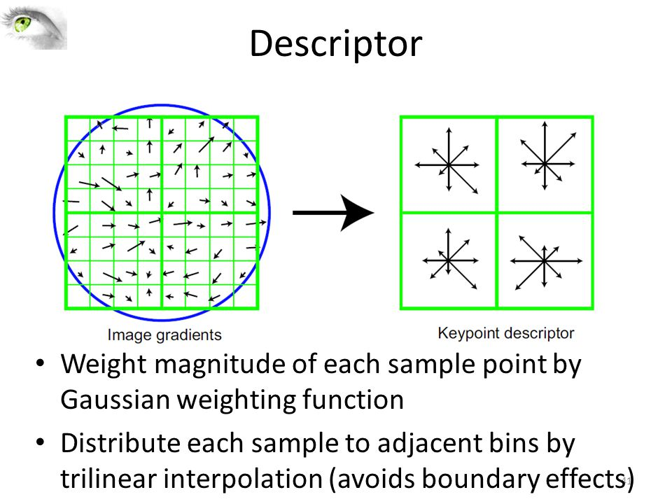Descriptor Weight magnitude of each sample point by Gaussian weighting function.