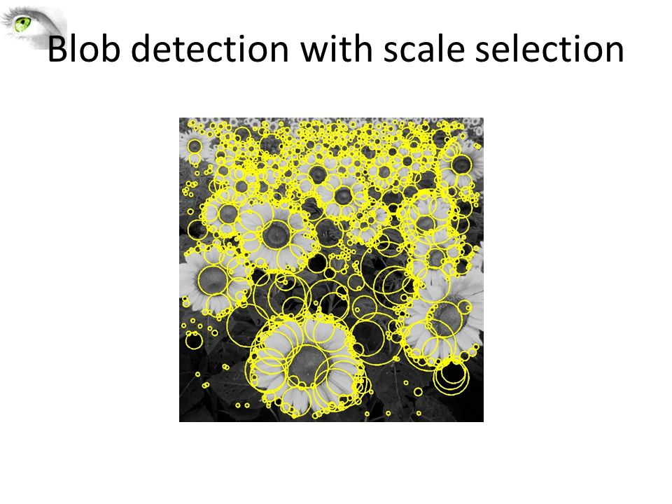 Blob detection with scale selection
