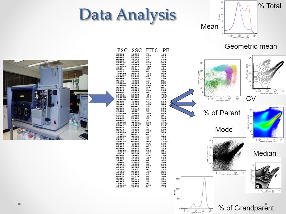 data analysis section of a thesis Data analysis summary the methods section of a research paper provides the information by which a study's validity is judged therefore.