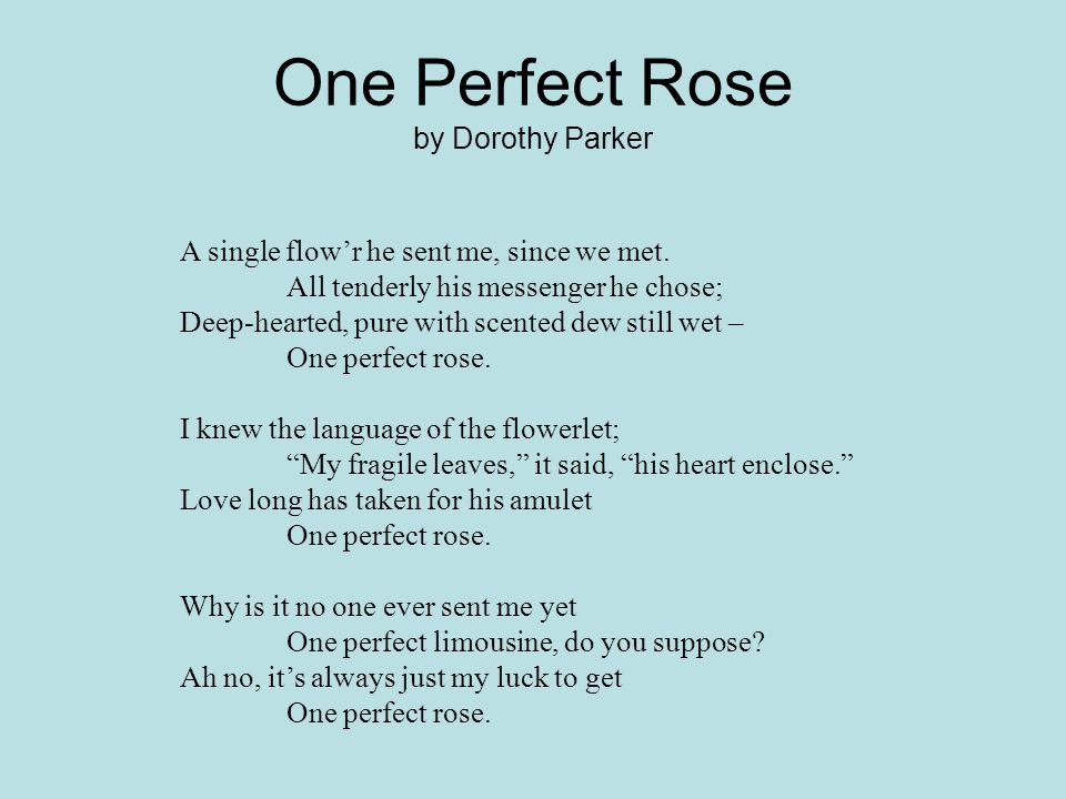 poem one perfect rose Consider the contrast between the poet and the daffodils, and between his   except for the three-times repetition of one perfect rose in every stanzas, the.