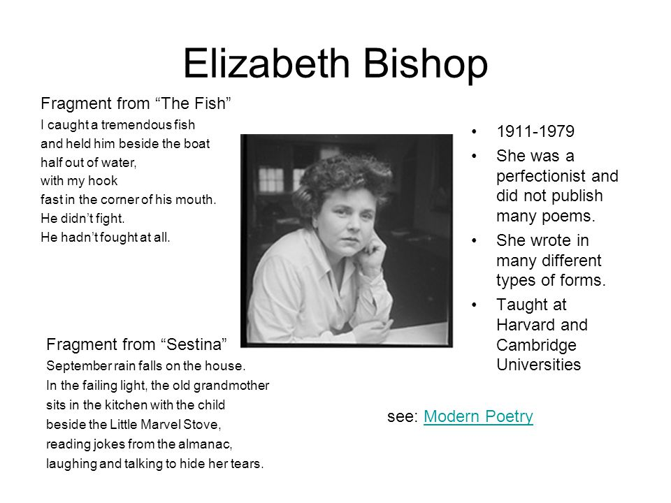 Elizabeth Bishop Fragment from The Fish