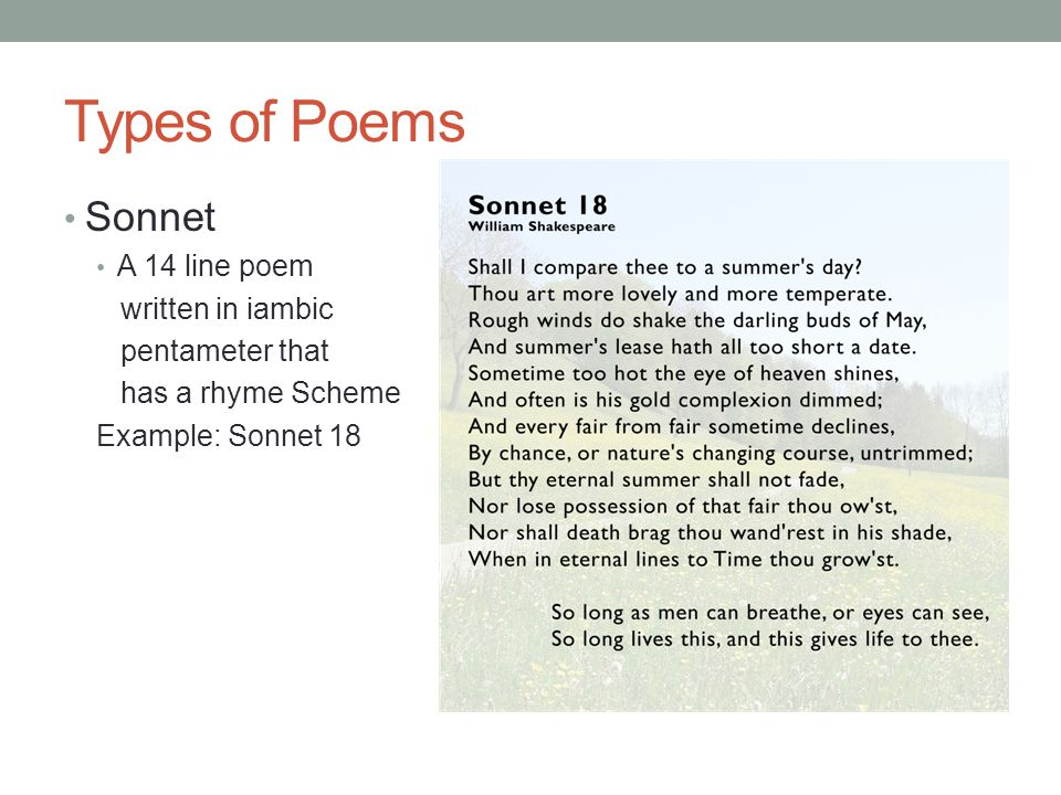 Types of Poems Sonnet A 14 line poem written in iambic pentameter that