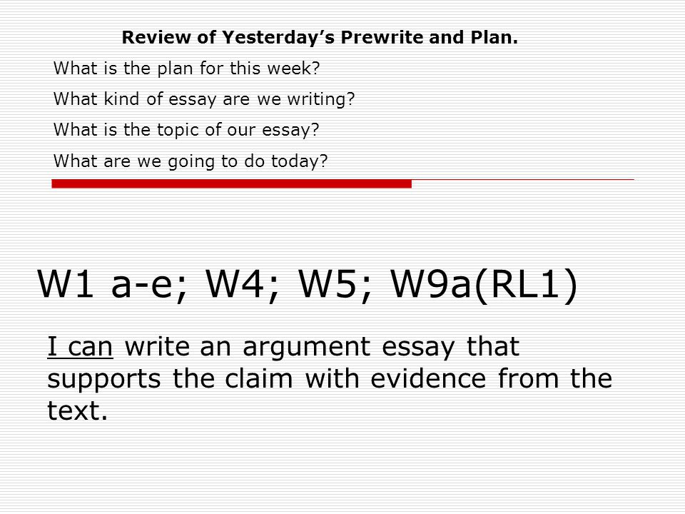 What is an essay prewrite