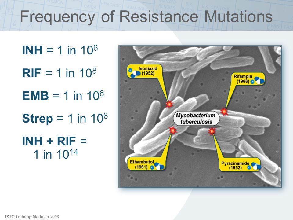 Frequency of Resistance Mutations