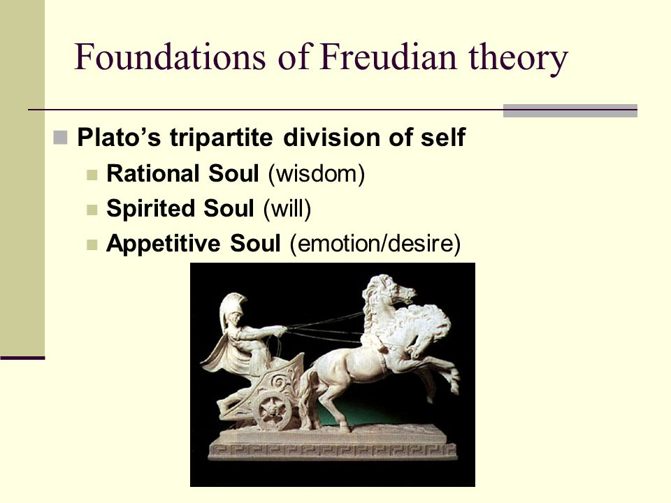 The Three Parts Of The Soul According To Freud And Plato