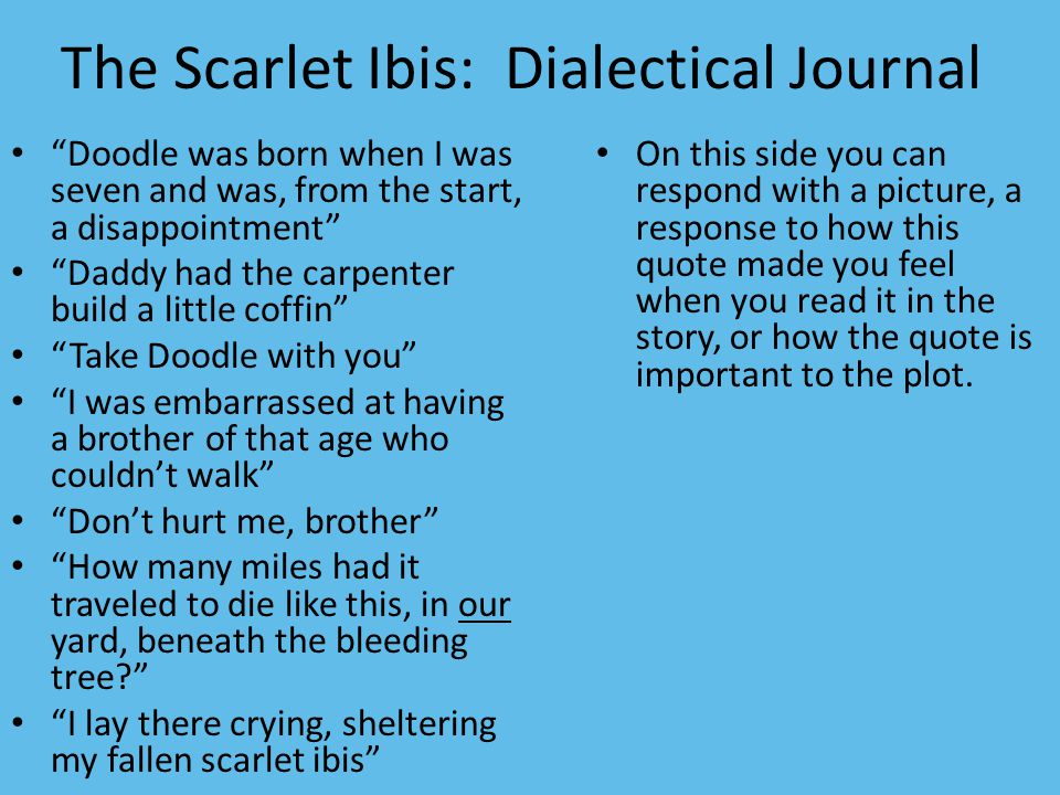 dialectical journal black like me Free download here sample dialectical journal entries - webster central school   sample dialectical journal: black like me by john howard griffin text.