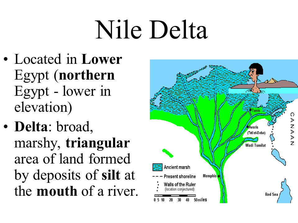 Nile Delta Located in Lower Egypt (northern Egypt - lower in elevation)