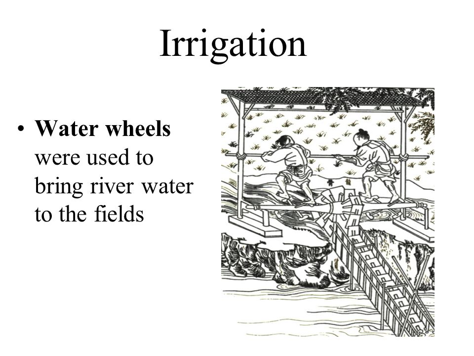 Irrigation Water wheels were used to bring river water to the fields