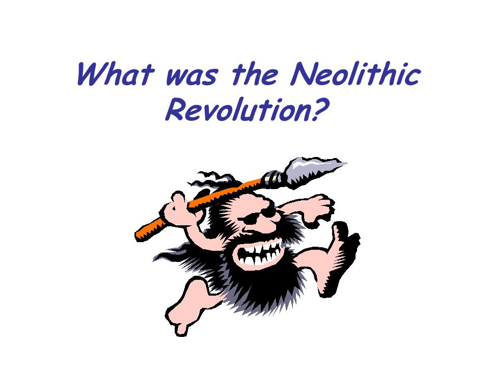 What was the Neolithic Revolution