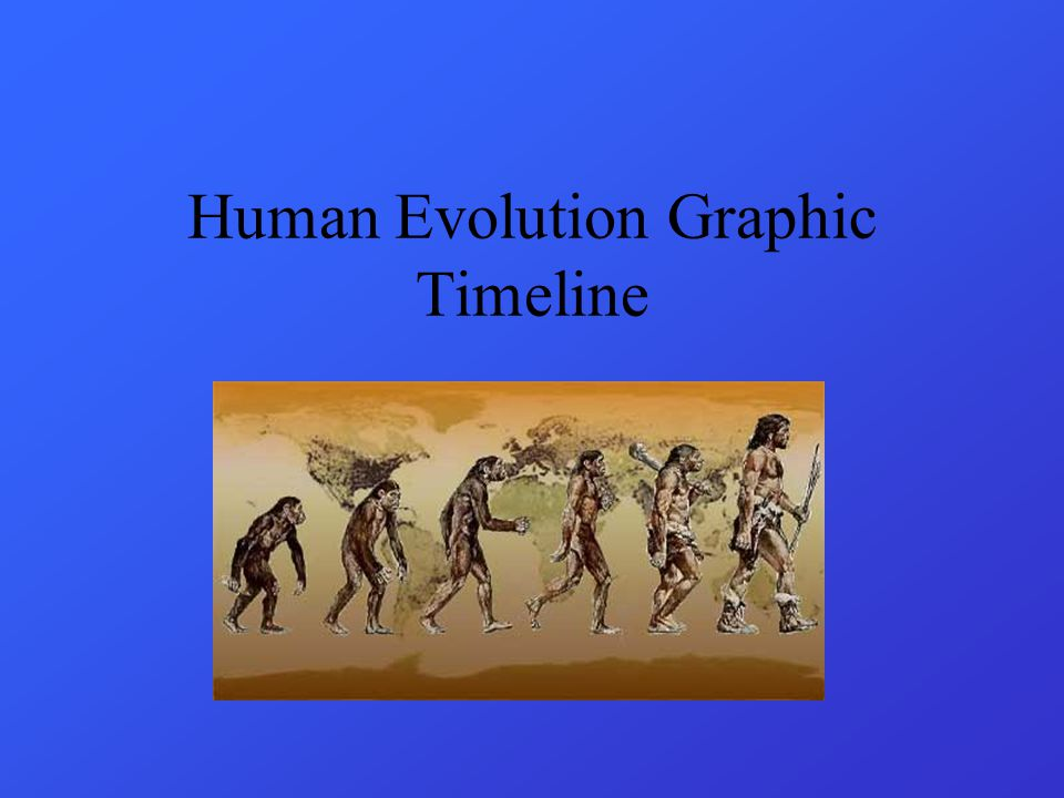 Human Evolution Graphic Timeline