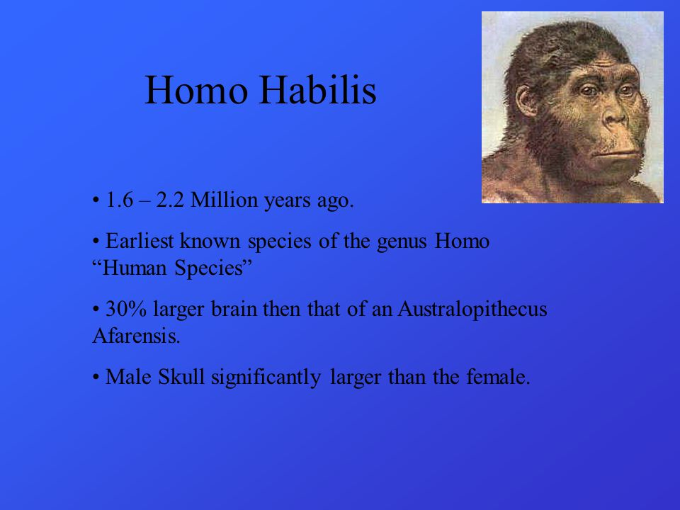 Homo Habilis 1.6 – 2.2 Million years ago.