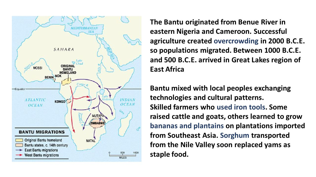 9th grade ap world history content material for examination the bantu originated from benue river in eastern nigeria and cameroon biocorpaavc