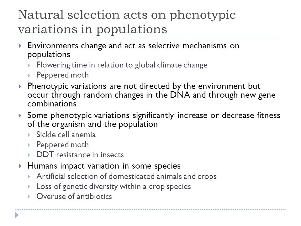 Antibiotics In Relation To Natural Selection