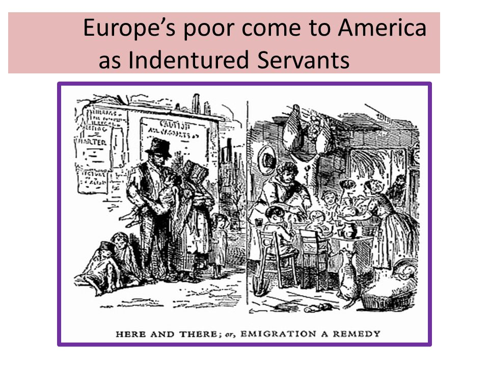 the indentured servants of north america Indentured servants were an important piece of establishing colonies in north america they first arrived in america in the decade following the settlement of jamestown by the virginia company in the sixteenth century (pbs, nd.