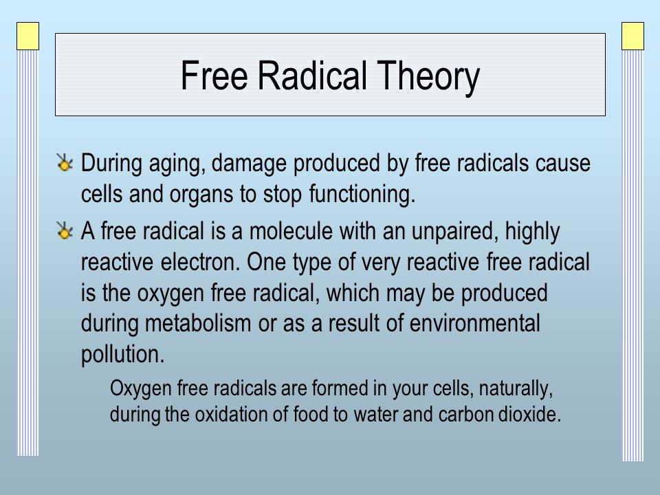 free the theoretical foundations of quantum