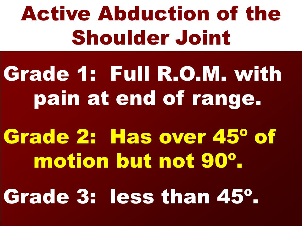 Active Abduction of the Shoulder Joint