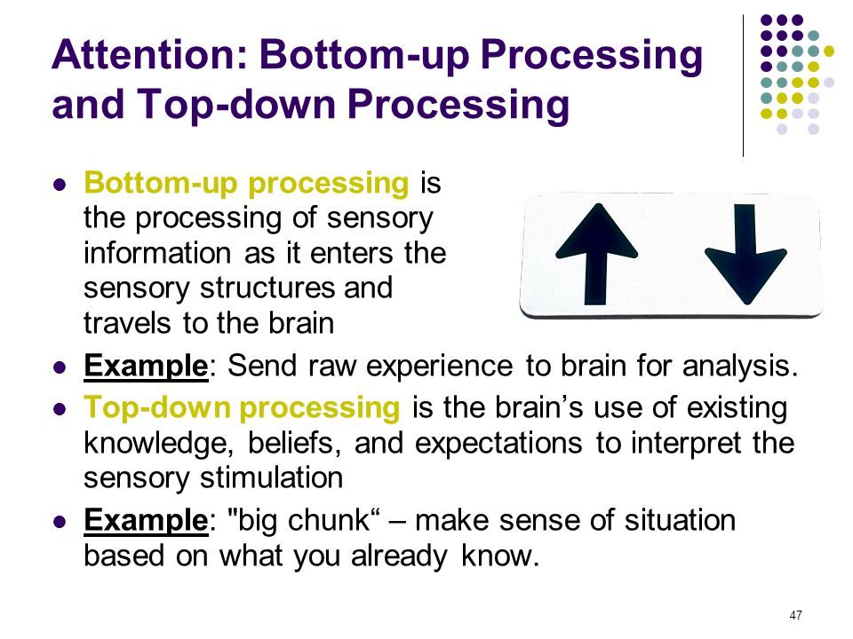 top down bottom up in cognition A mathematical theory combining the discussed mechanisms of cognition as interaction between top-down and bottom-up signals is summarized below following [21, 41] in a single layer of the mental hierarchy, neurons are enumerated by index 𝑛 = 1,, n.