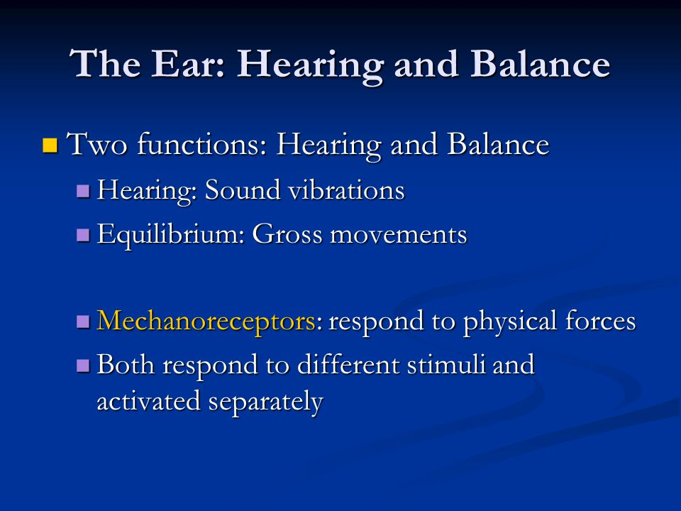 The ear and hearing and balance anatomy