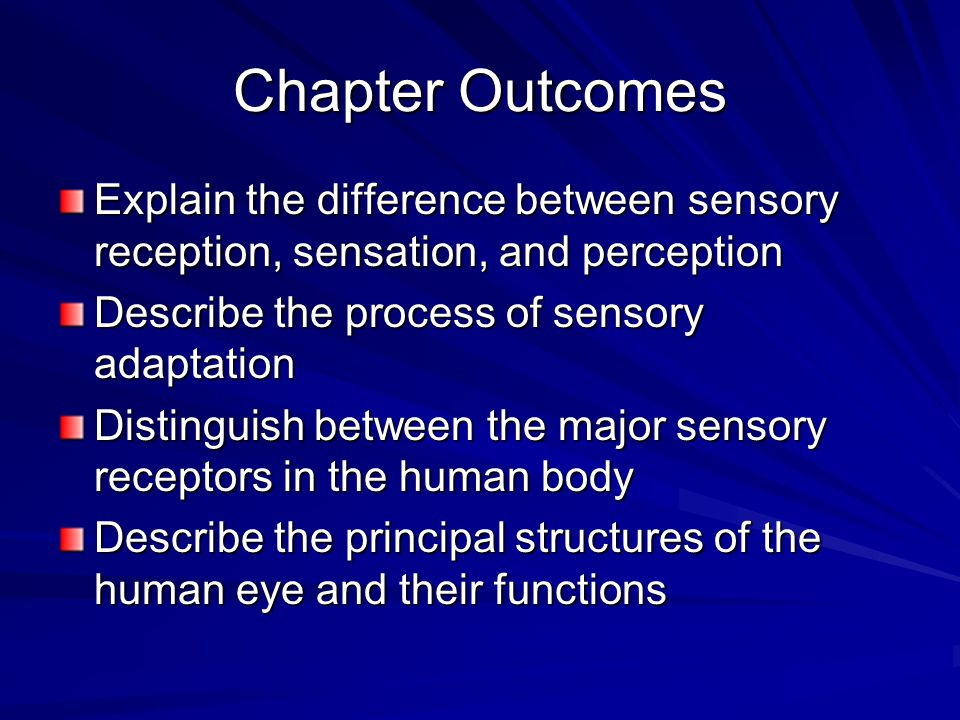 The features of the perception process