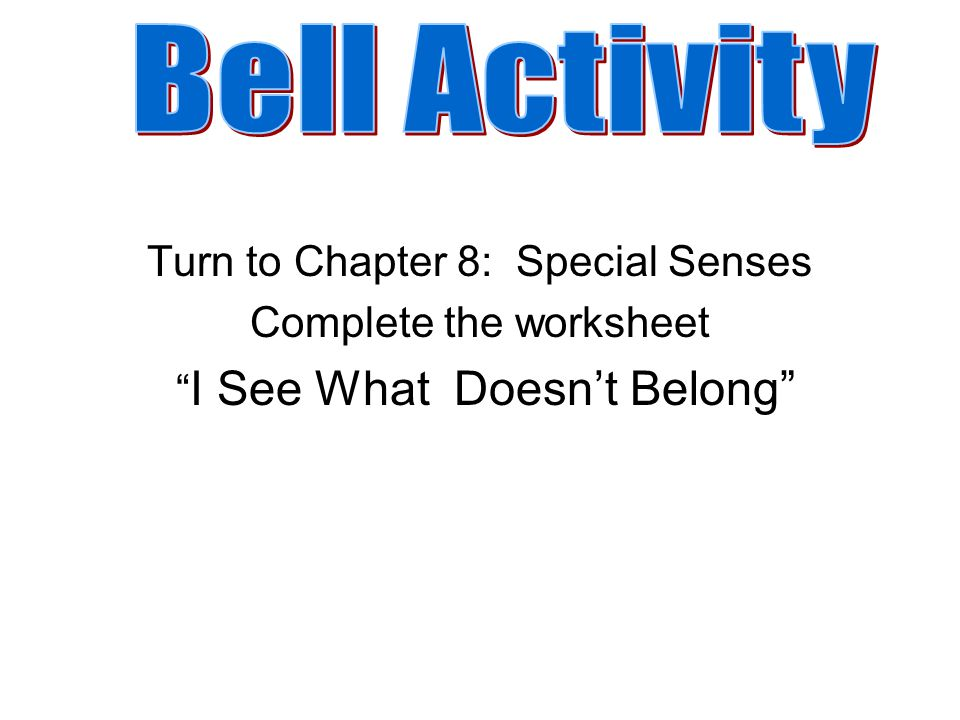 Bell Activity Turn to Chapter 8 Special Senses Complete the – Chapter 8 Special Senses Worksheet Answers