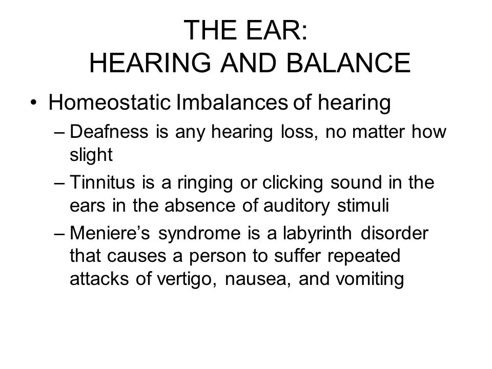 THE SPECIAL SENSES ppt video online download – The Ear Hearing and Balance Worksheet