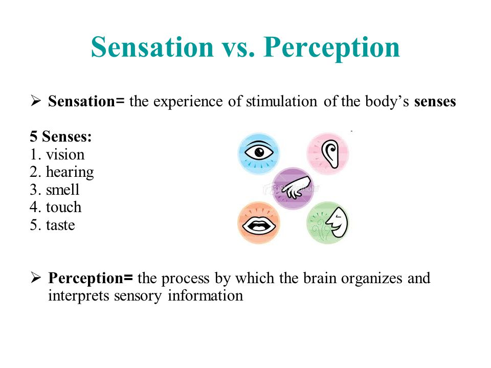 sensation and perception 3 essay Perceptual experience 1 perceptual experience and bodily sensations one way   page 3  a critical and quasi-historical essay on theories of pain in pain.