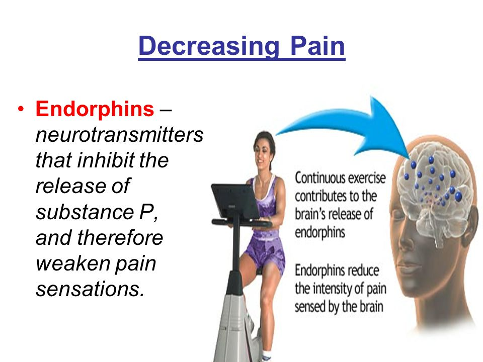 the effect of endorphins on pain Being in a positive state has significant impact on our motivation,  endorphins  are released in response to pain and stress and help to.