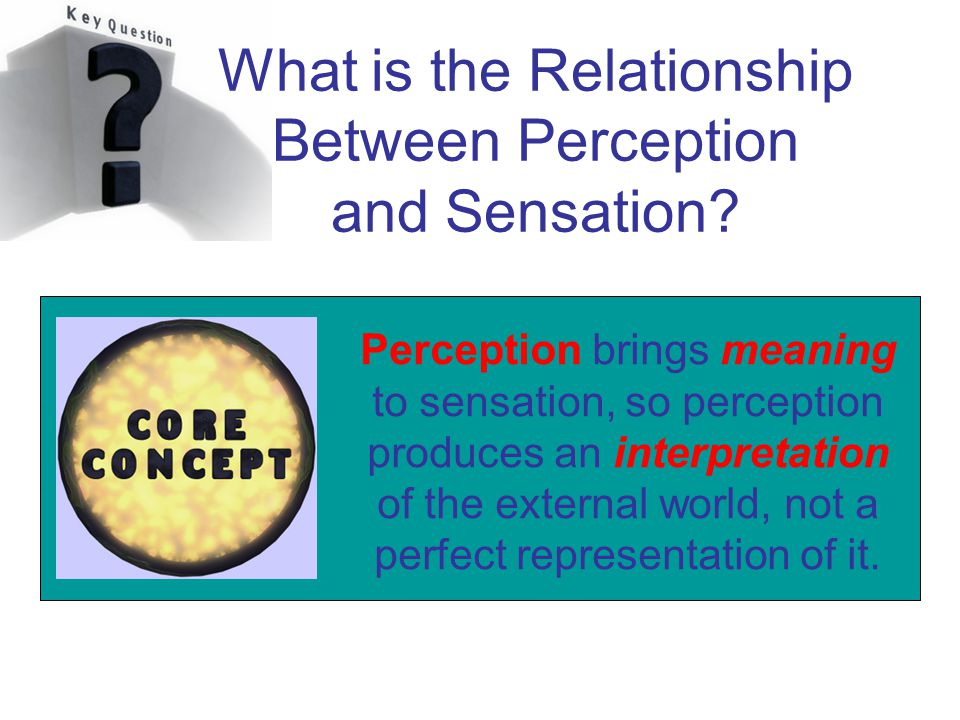 an analysis of sensation and perception A synthetic definition of perception is proposed, using the critical characteristics of sensation, selection, assimilation, and interpretation four nursing frameworks, those of king, levine, orem, and roy, are analyzed in relation to the concept of perception as pre sented in each theory.