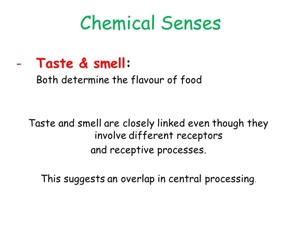 chemical senses of taste and smell relationship