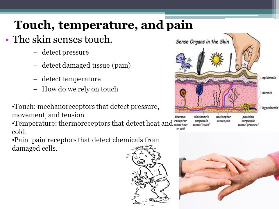 how do we detect pain pdf