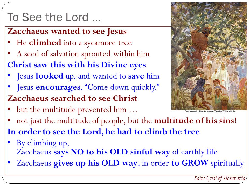 To See the Lord … Zacchaeus wanted to see Jesus