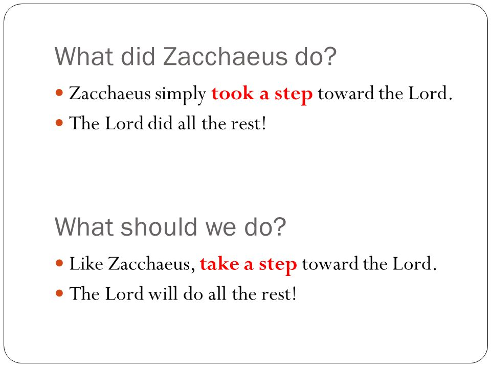What did Zacchaeus do What should we do