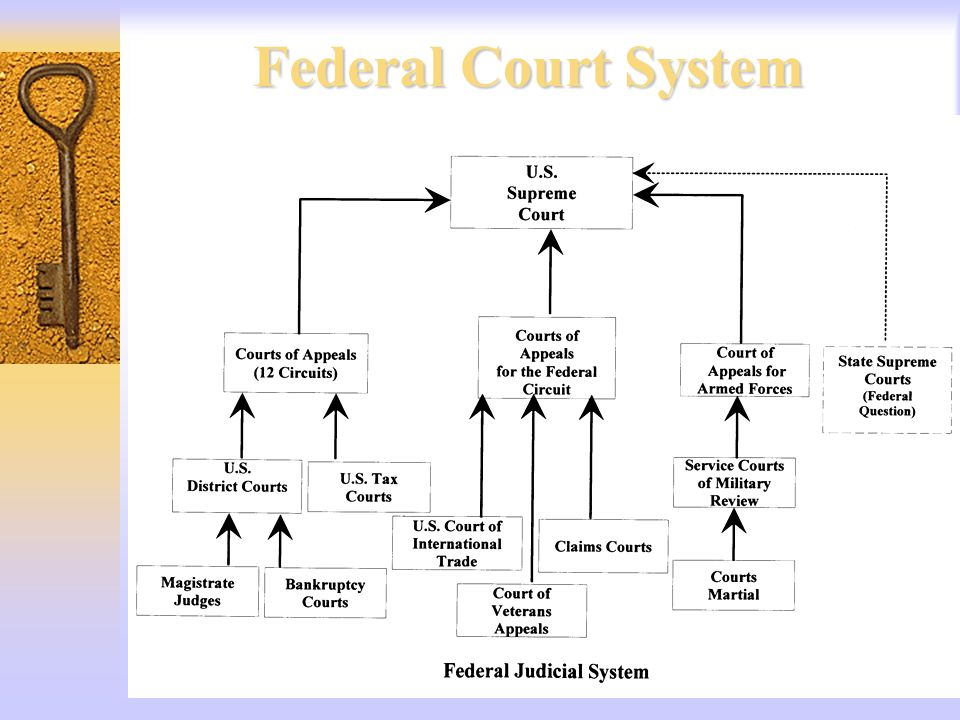 nevada court system Welcome to the city of las vegas municipal court system  please be advised that our web and voice system will be down on tuesday 7/17/2018 from 6pm pst to 11pm pst .