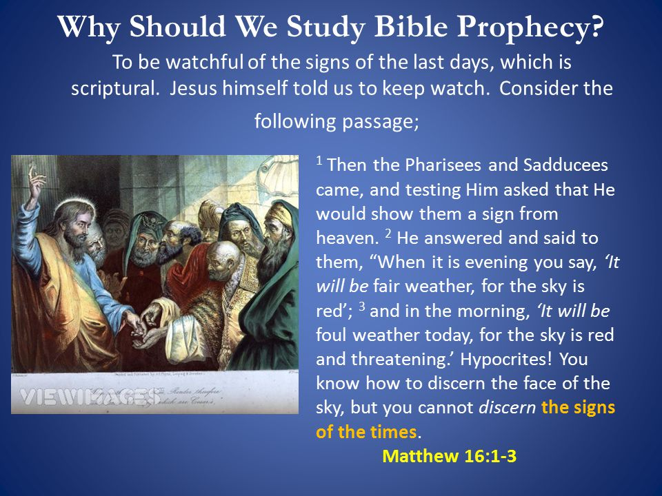 Who Were The Pharisees And Sadducees In The Bible? Leaders of the Jewish Synagogue