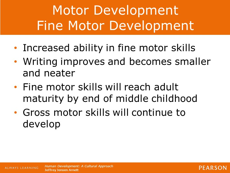 motor development in late childhood Toddler developmental milestones gross motor skills gross motor development involves the larger, stronger muscle groups of the body in early childhood, it is the development of these muscles that enable the baby to hold his/her head up, sit, crawl and eventually walk, run and skip.
