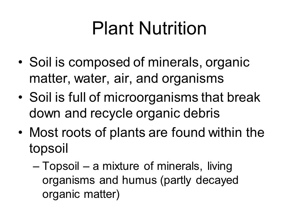 Nutrition autotroph an organism that produces complex for Soil is composed of