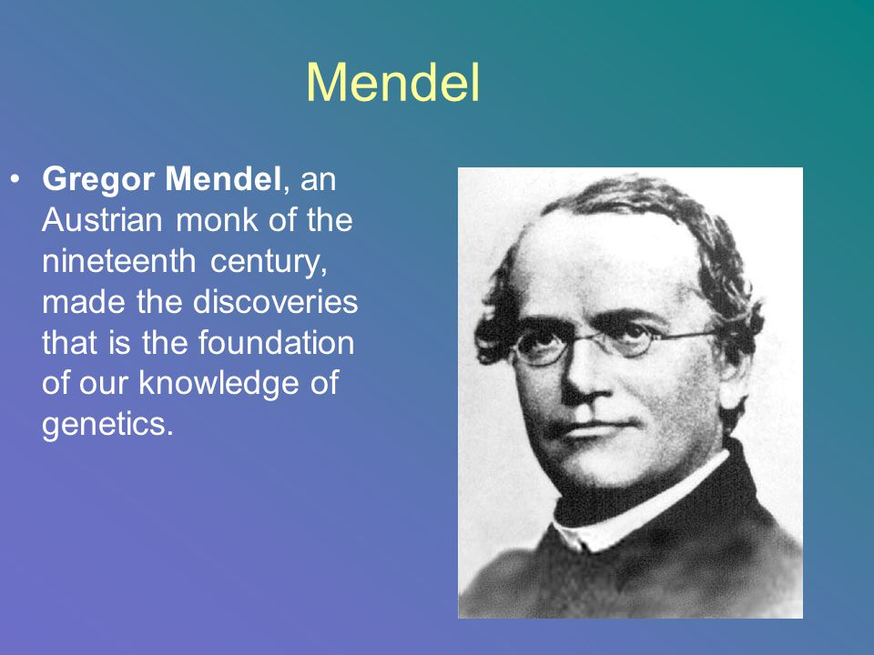Mendel Gregor Mendel, an Austrian monk of the nineteenth century, made the discoveries that is the foundation of our knowledge of genetics.