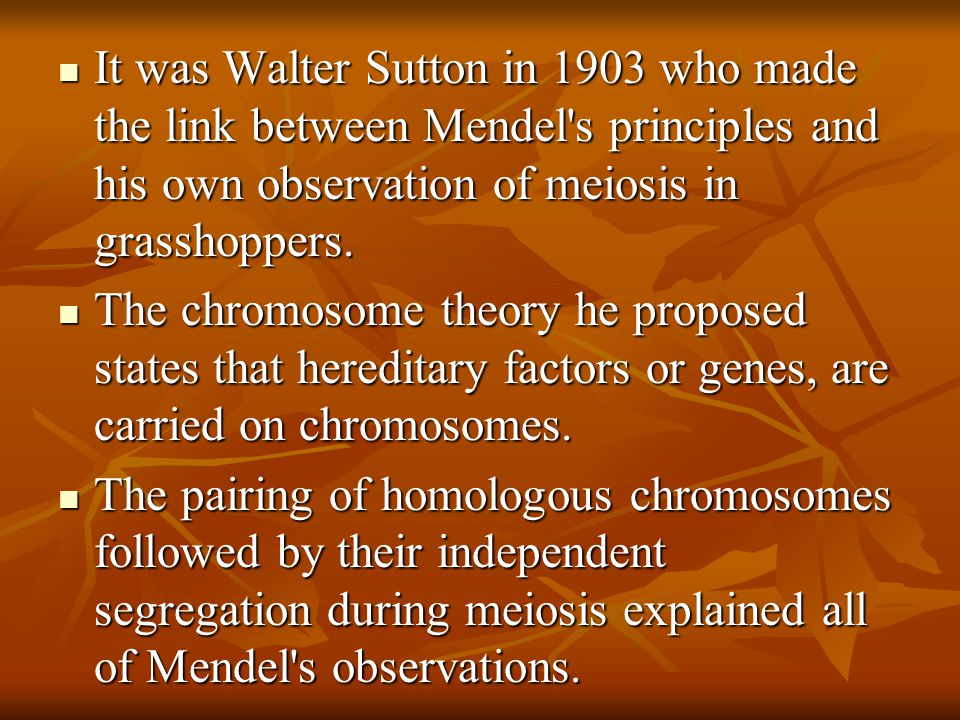 It was Walter Sutton in 1903 who made the link between Mendel s principles and his own observation of meiosis in grasshoppers.