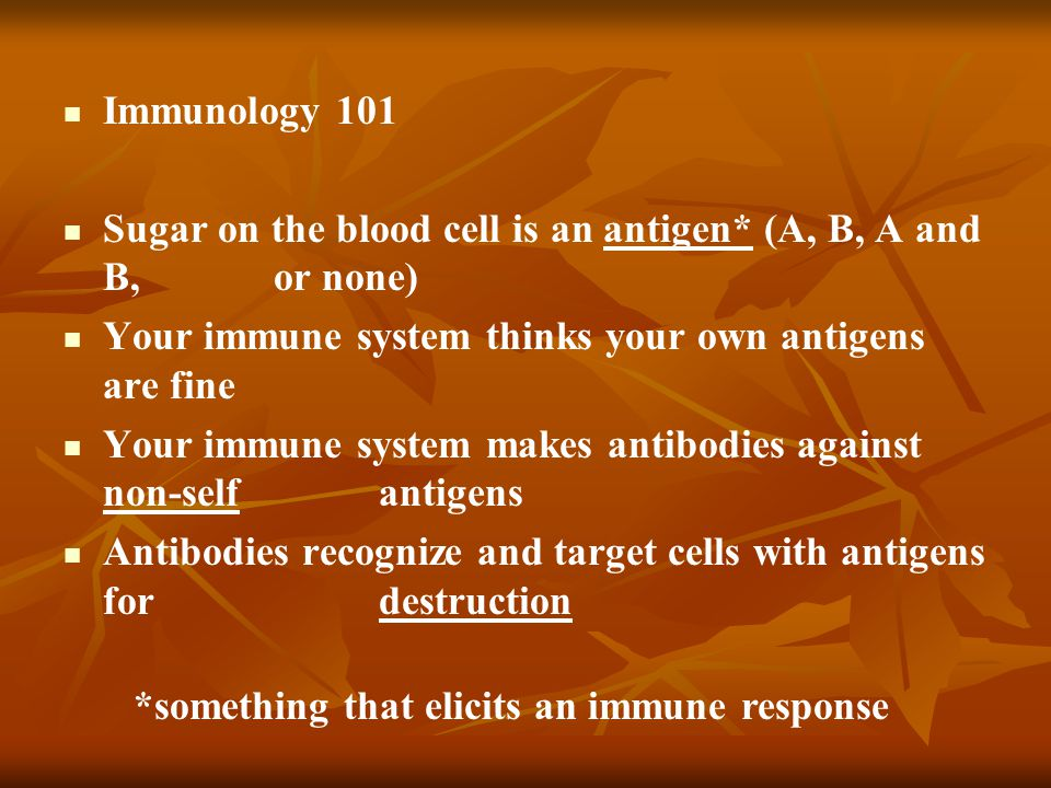 Immunology 101 Sugar on the blood cell is an antigen* (A, B, A and B, or none) Your immune system thinks your own antigens are fine.