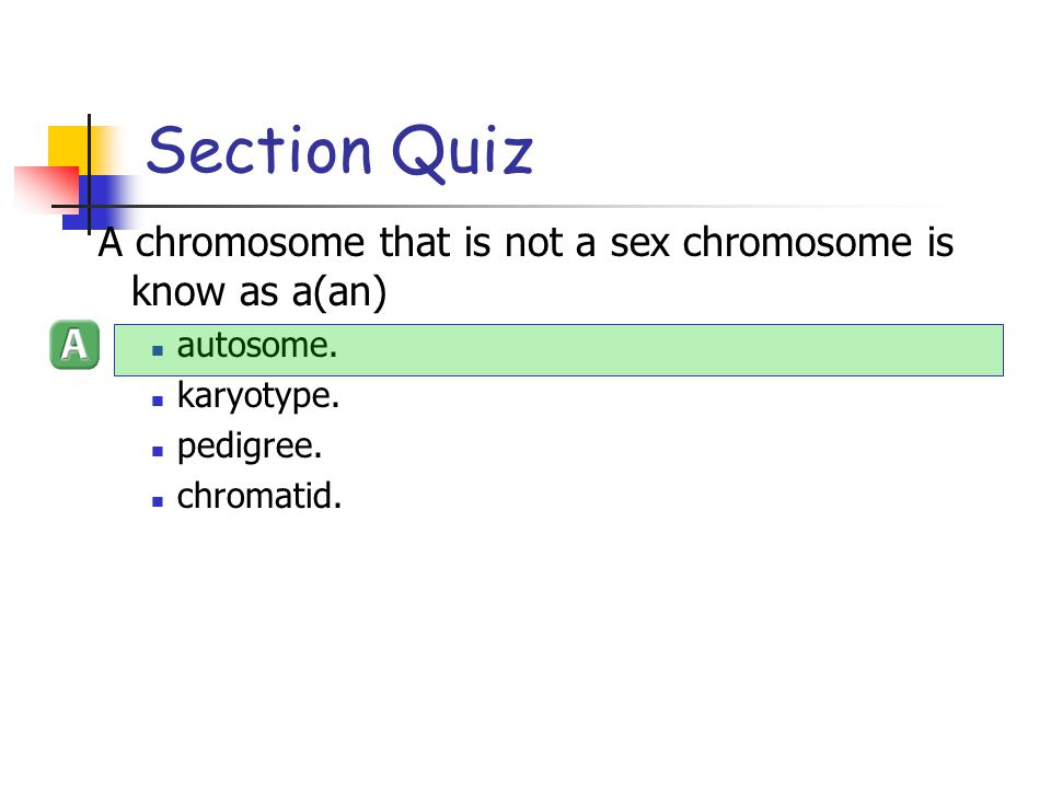 Section Quiz A chromosome that is not a sex chromosome is know as a(an) autosome. karyotype. pedigree.