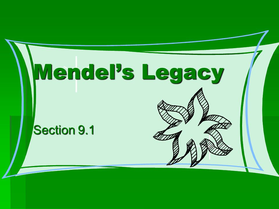 Mendel's Legacy Section 9.1