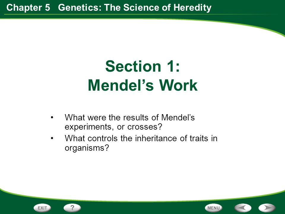 Section 1: Mendel's Work