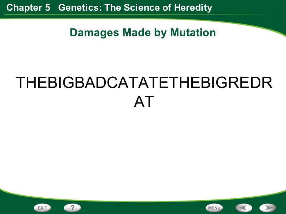 Damages Made by Mutation