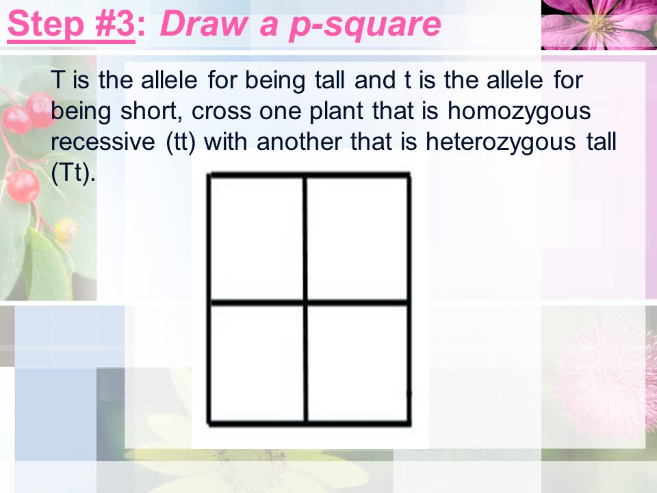 Step #3: Draw a p-square