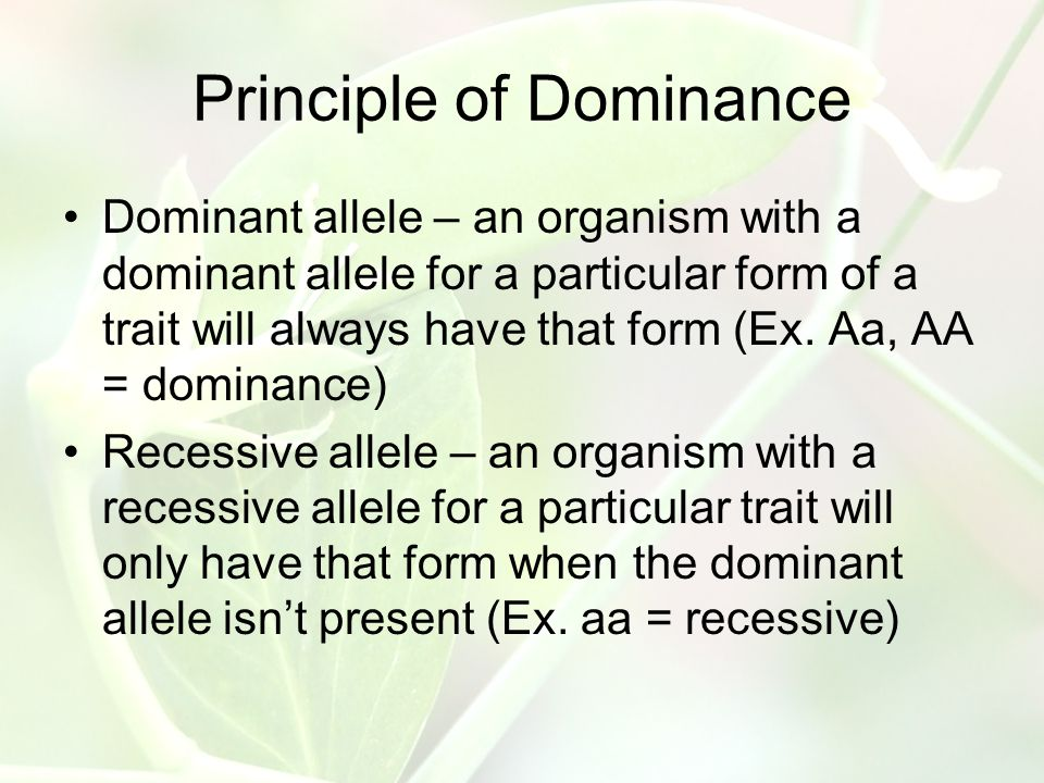 principle of recessiveness and dominance in a relationship